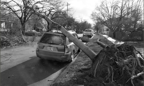 Photo: Credit Unions and NWCUF Provide Disaster Relief for Oregon Ice Storm Victims